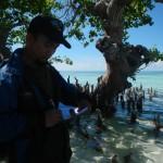Mangrove Tarupa 4