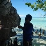 Mangrove Tarupa 5